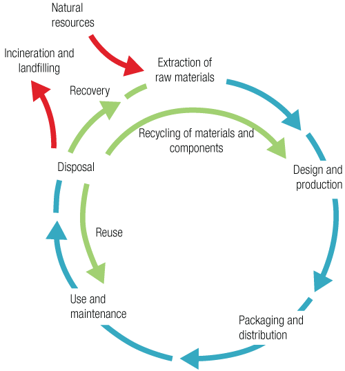Maturity Stage of the Product Life Cycle  Studycom
