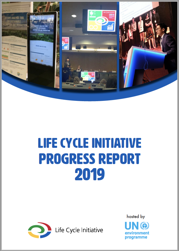 LC Initiative 2019 progres report